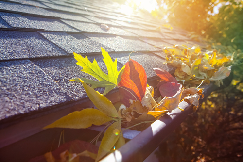 5 telltale signs that it's time to replace your roof